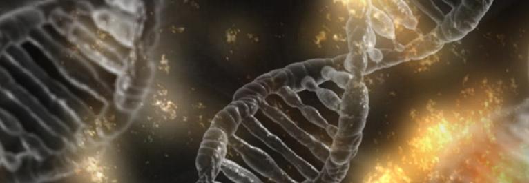 13.03.2019 – Life Science Expertensprechstunde – Fokus MedTech